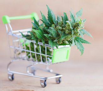 Close up of a miniature shopping cart holding marijuana leaves