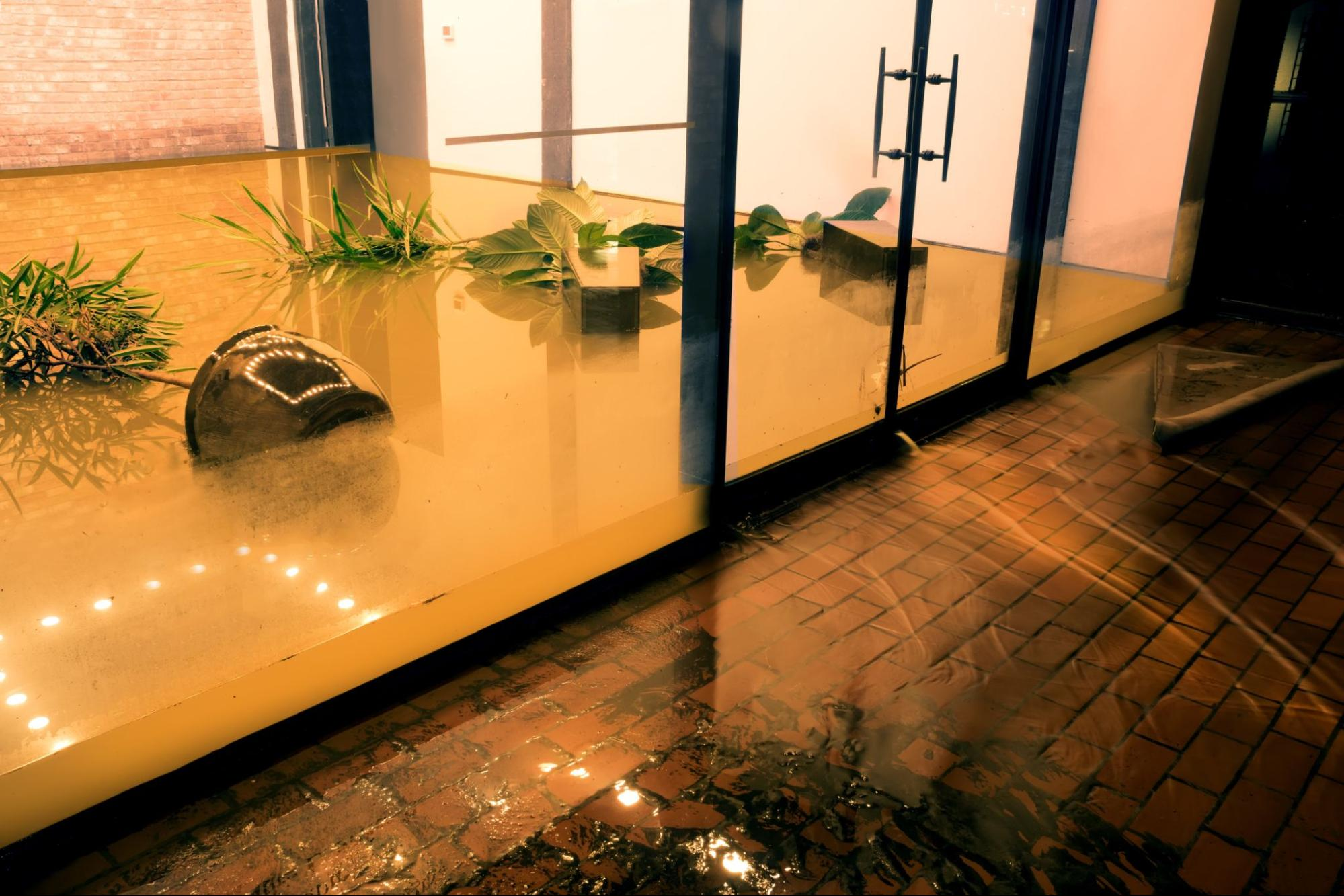 A flooded office after a hurricane with toppled potted plants